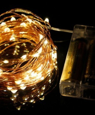 Copper seed fairy lights